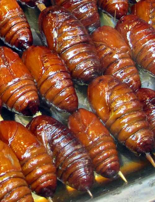 Beijing street food; Candied larvae