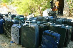 Almost 1,000 bags found at home of thieves. Almost all black.